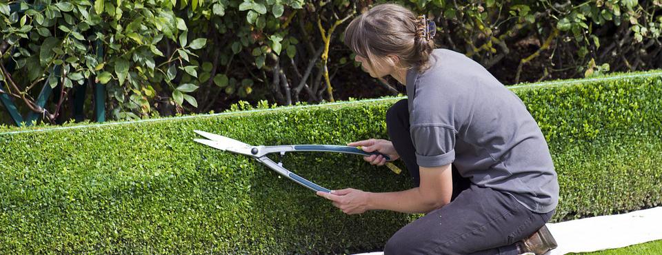 jardineiro-01a
